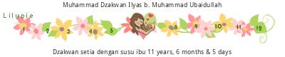 Lilypie Breastfeeding (5fDU)